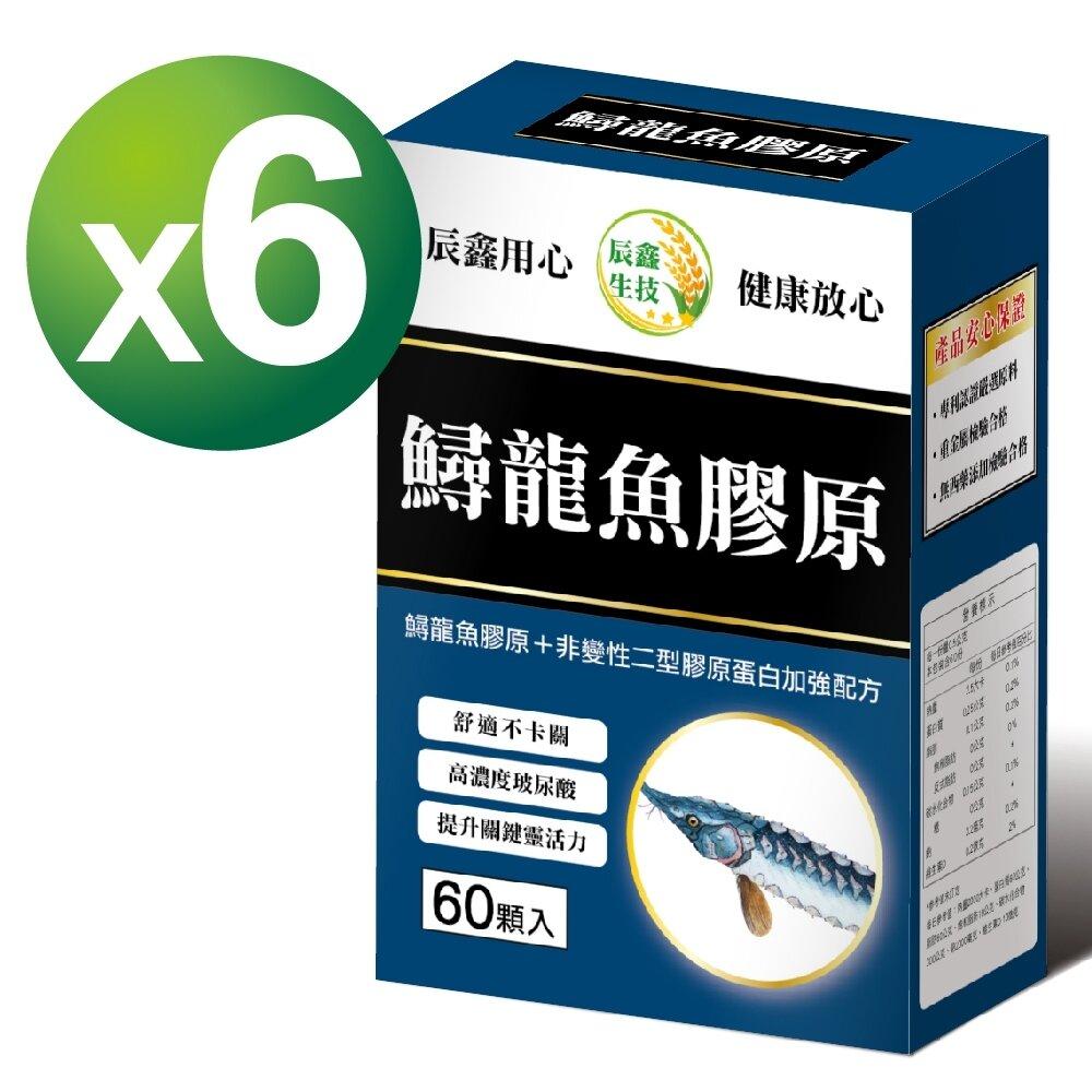 辰鑫生技-鱘龍魚膠原(60粒/盒)x6入組-(添加葡萄糖胺+二型膠原蛋白+MSM)