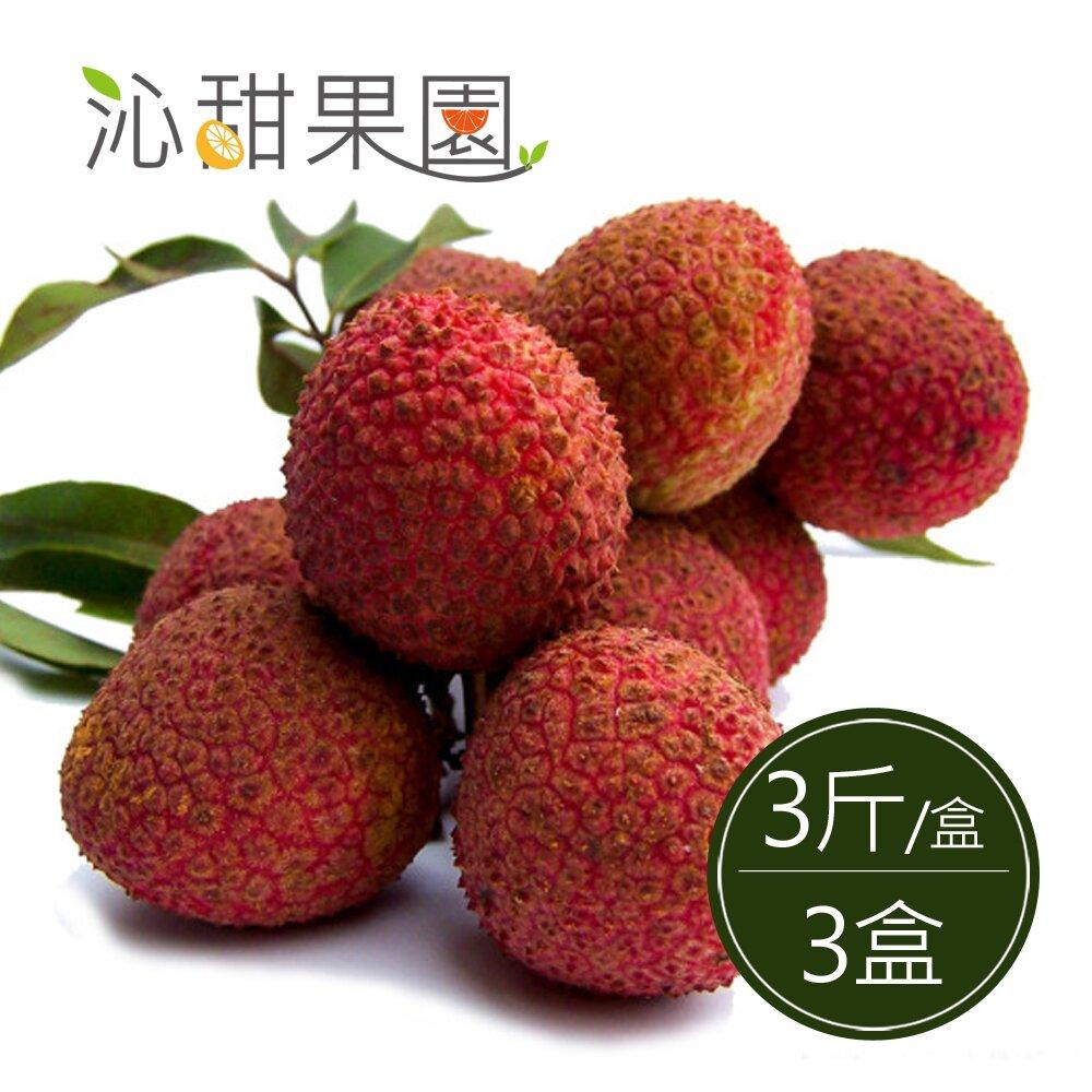 《沁甜果園SSN》高雄大樹玉荷包-粒果3斤裝×3盒