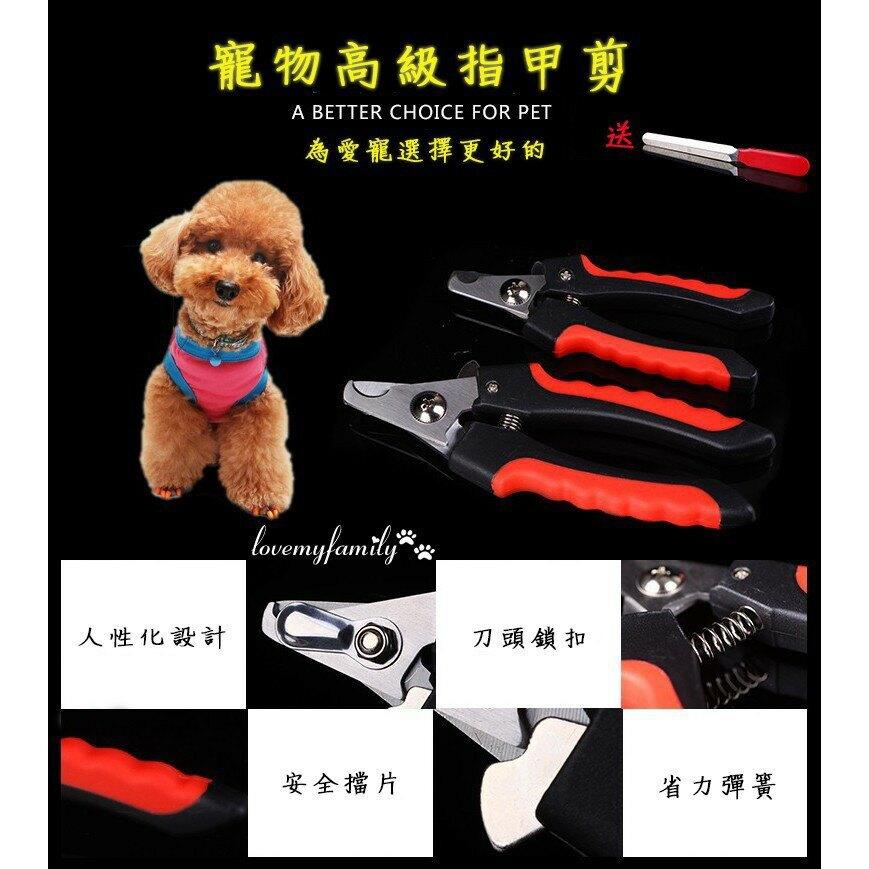 【現貨】專業寵物指甲剪 寵物美容工具