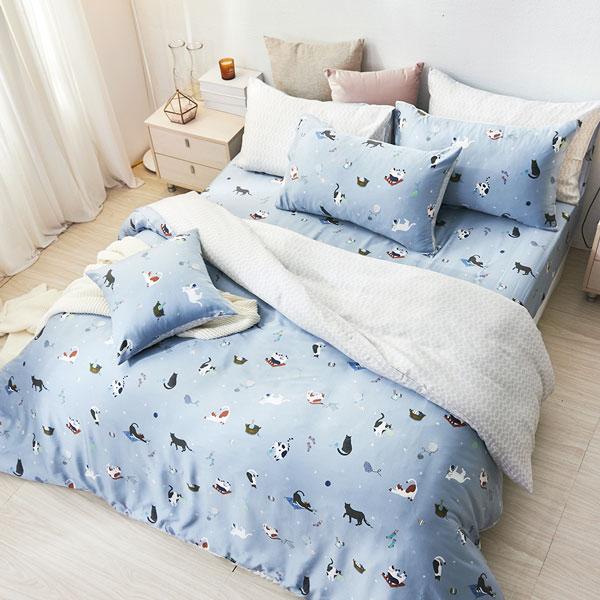 床包被套組(薄被套)-雙人/40支/ 萊賽爾天絲四件式 / 貓咪日常 台灣製