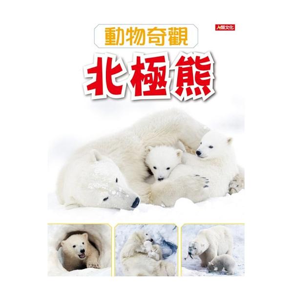 動物奇觀:北極熊