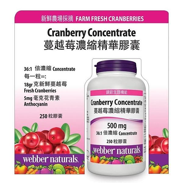 Webber Naturals 蔓越莓濃縮精華膠囊 250 粒