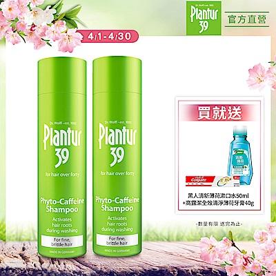 Plantur39 植物與咖啡因洗髮露 細軟脆弱髮 250mlx2(加碼送高露潔全效牙膏40g+黑人清新漱口水50ml)