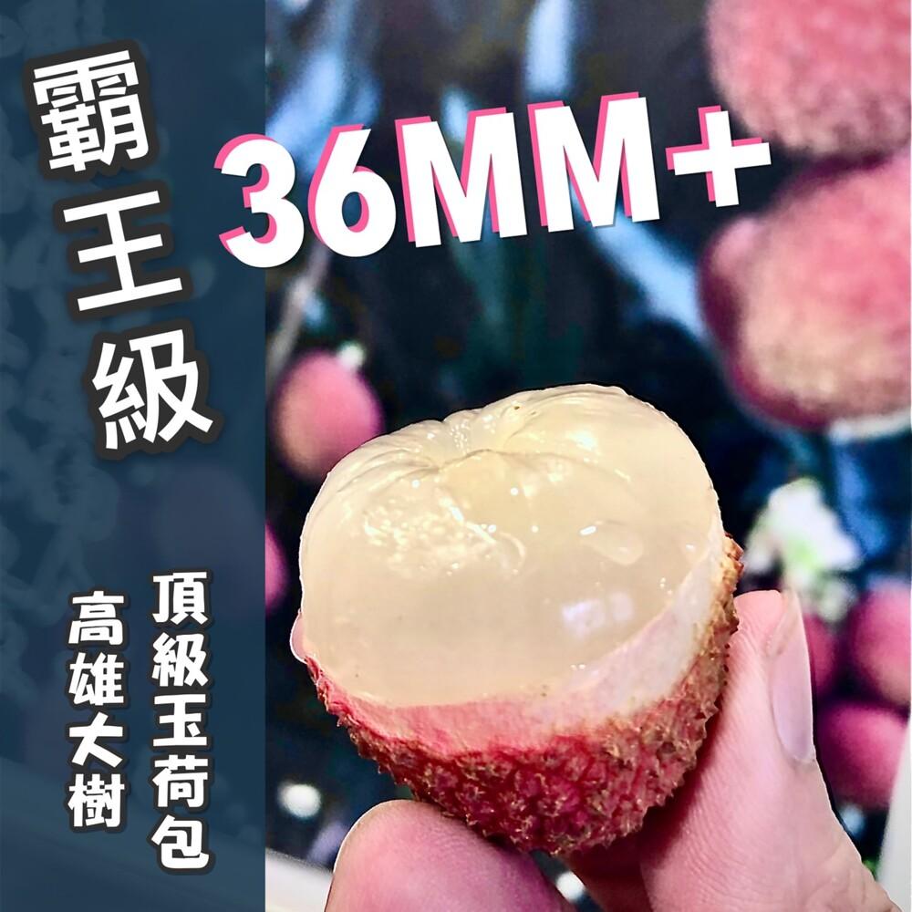 預購老張果物霸王級36mm+大樹玉荷包 (去枝葉5斤禮盒裝)