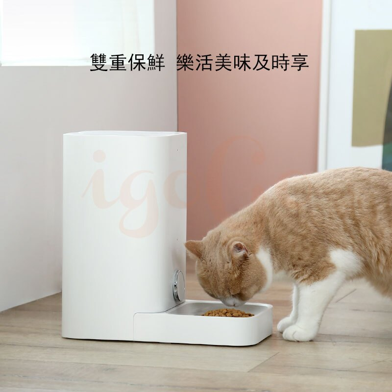 ⭐️現貨免運⭐️PETKIT mini 寵物自動餵食器 自動餵食器 智能寵物餵食器  餵食機