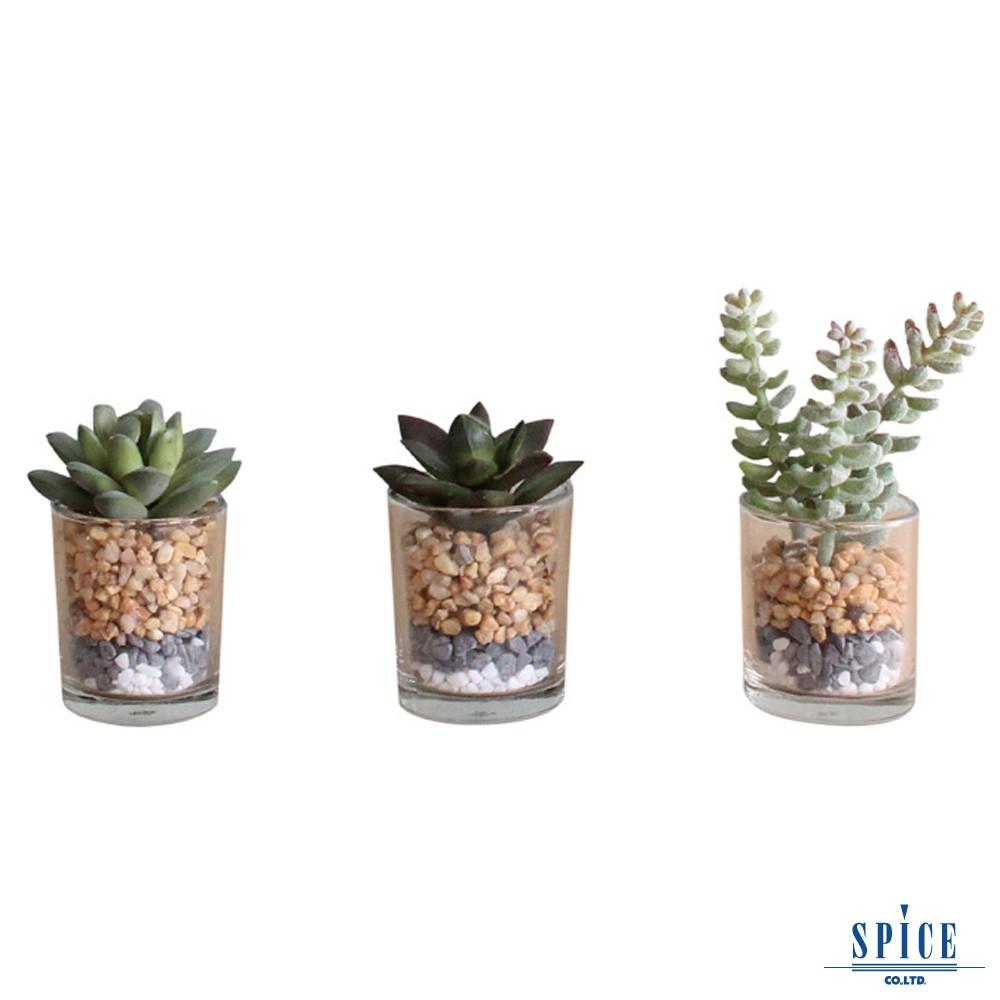 SPICE 日本雜貨 人造綠色植物玻璃盆栽 三款 人造盆栽 假花 假盆栽 假植物 網美道具