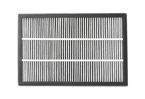 【TATUNG 大同】清淨機濾網 (F1900PE) 大同 清淨機 濾網