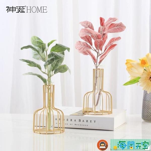 簡約北歐小清新試管玻璃花瓶擺件客廳插花花器裝飾品海闊天空