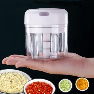 電動蒜泥食物調理器(贈雙層帶蓋葱姜蒜冰箱保鲜盒)