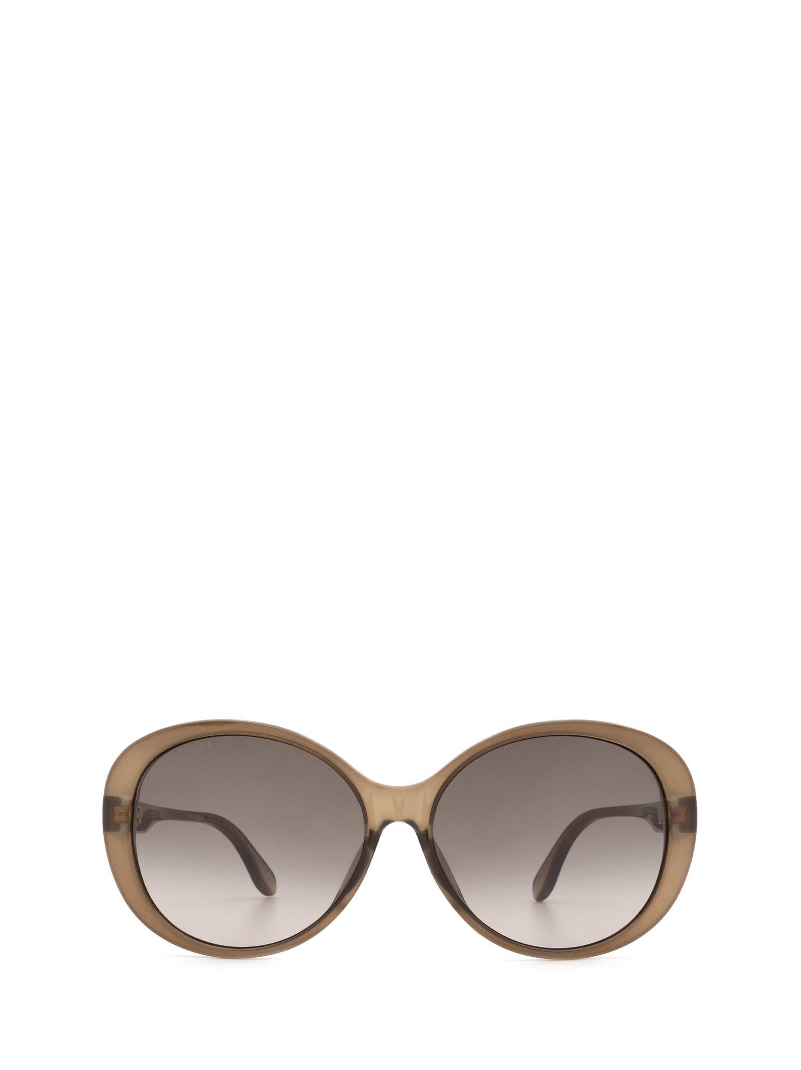 Gucci Gucci Gg0793sk Brown Sunglasses