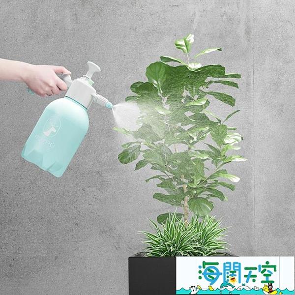 消毒噴壺澆花噴霧瓶園藝家用灑水壺氣壓式噴霧器超級品牌【海闊天空】