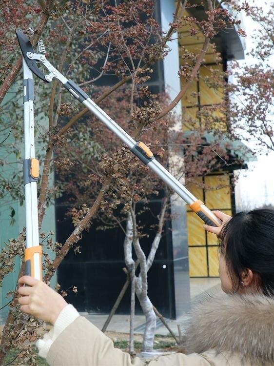 修剪樹枝剪刀粗枝剪大力剪修枝剪家用大剪刀園林強力園藝工具 育心館