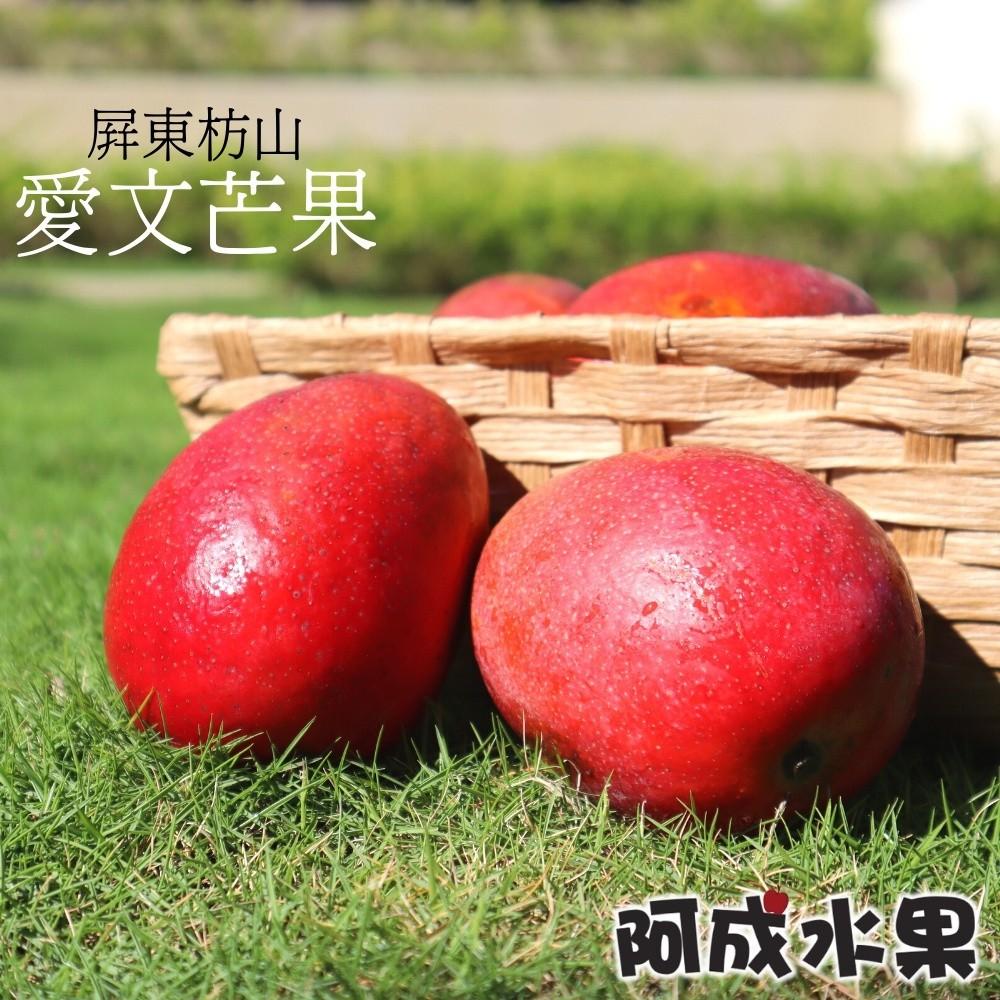 【阿成水果】屏東枋山愛文芒果 (15粒/9台斤/件)