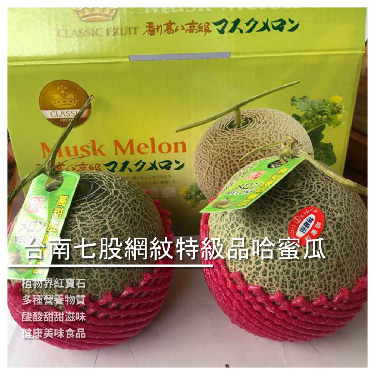 【水狗西西商行】水果西西-台南七股網紋特級品哈蜜瓜