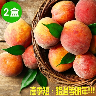 預購【高媽媽水蜜桃】正宗拉拉山水蜜桃(10顆)/盒x2盒 (冷藏宅配)