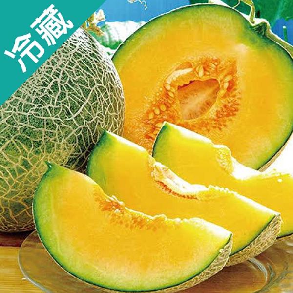 台灣雲林哈蜜瓜1粒(1.2kg±5%/粒)【愛買冷藏】