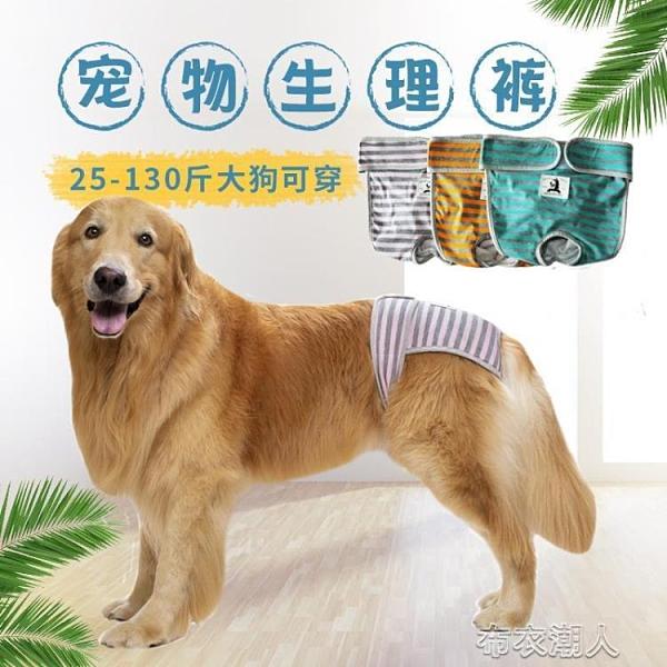 狗狗生理褲拉布拉多金毛中大型犬母狗月經褲狗狗防騷擾寵物安全褲 快速出貨