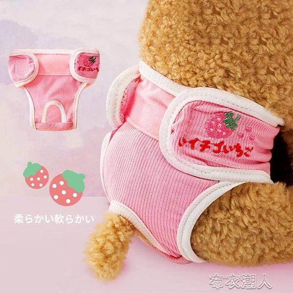 狗狗月經褲生理褲母狗小型泰迪法斗大姨媽女衛生巾寵物經期姨媽褲 快速出貨