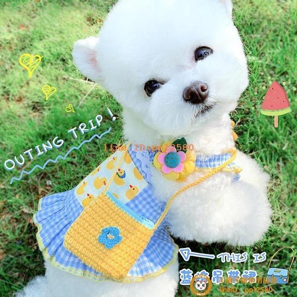 背包連衣裙寵物貓咪狗狗夏季薄款法斗柯基泰迪博美比熊衣服小型犬小狗狗【小獅子】