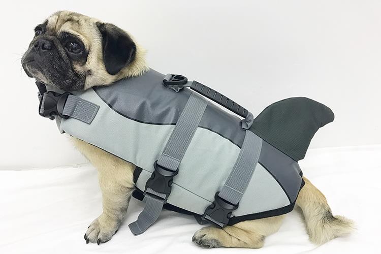 寵物游泳 狗狗救生衣法斗鯊魚泳衣柯基泰迪金毛大中小型犬玩水用【免運】