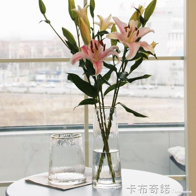 北歐輕奢玻璃花瓶透明 客廳 插花百合富貴竹玫瑰鮮花花瓶餐桌擺件 夏沐生活