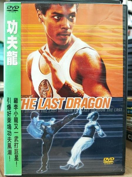 挖寶二手片-0B02-581-正版DVD-電影【功夫龍】-繼李小龍又一武打巨星(直購價)