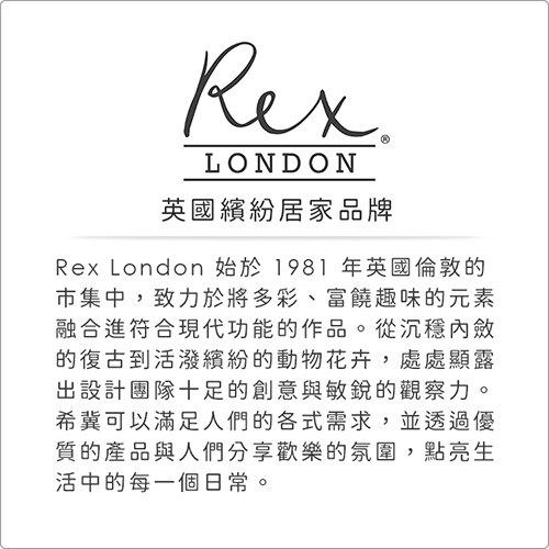 《Rex LONDON》夜光壁貼30件(星星)