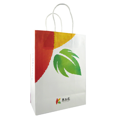 【瓜瓜園】地瓜點點小手提紙袋