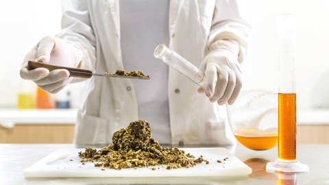 Read a CBD lab report