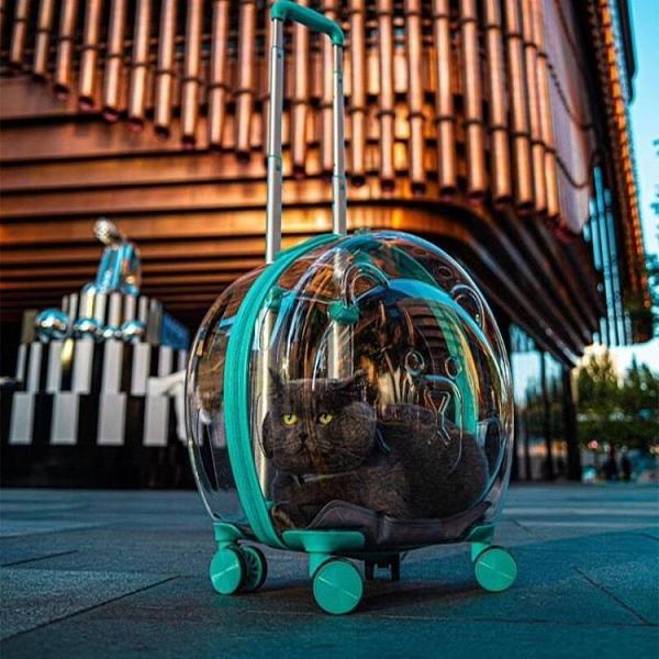 寵物拉桿箱貓狗15斤多功能便攜式箱萬向輪背包透氣戶外外出旅行包