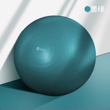 瑜伽球 加厚防爆健身兒童感統訓練大龍球專用助產【免運】