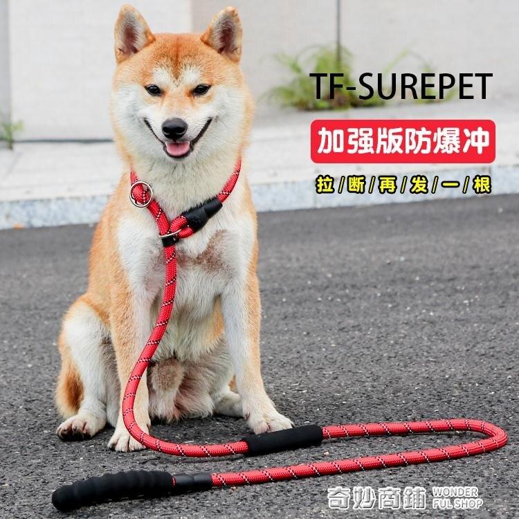 中大型犬狗鏈遛狗繩P鏈p繩加粗加長訓犬防爆沖金毛拉布拉多牽引繩