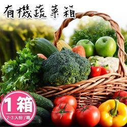 【禾鴻x麻豆柚果合作社】新鮮現採有機蔬果箱2-3人份x1箱