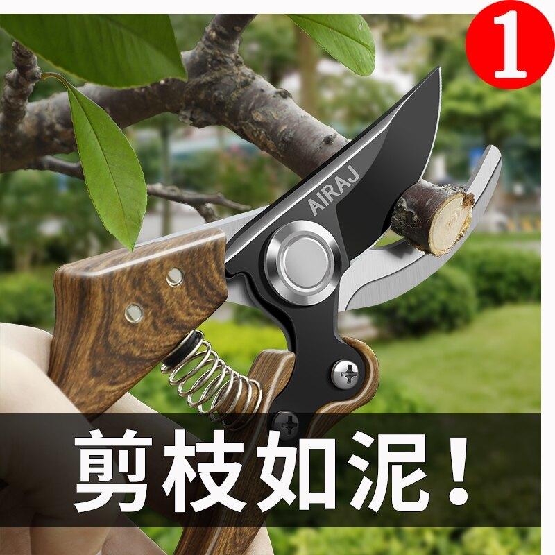 原裝進口sk5果園樹枝嫁接火龍果花卉不銹鋼專用綠化修枝剪刀