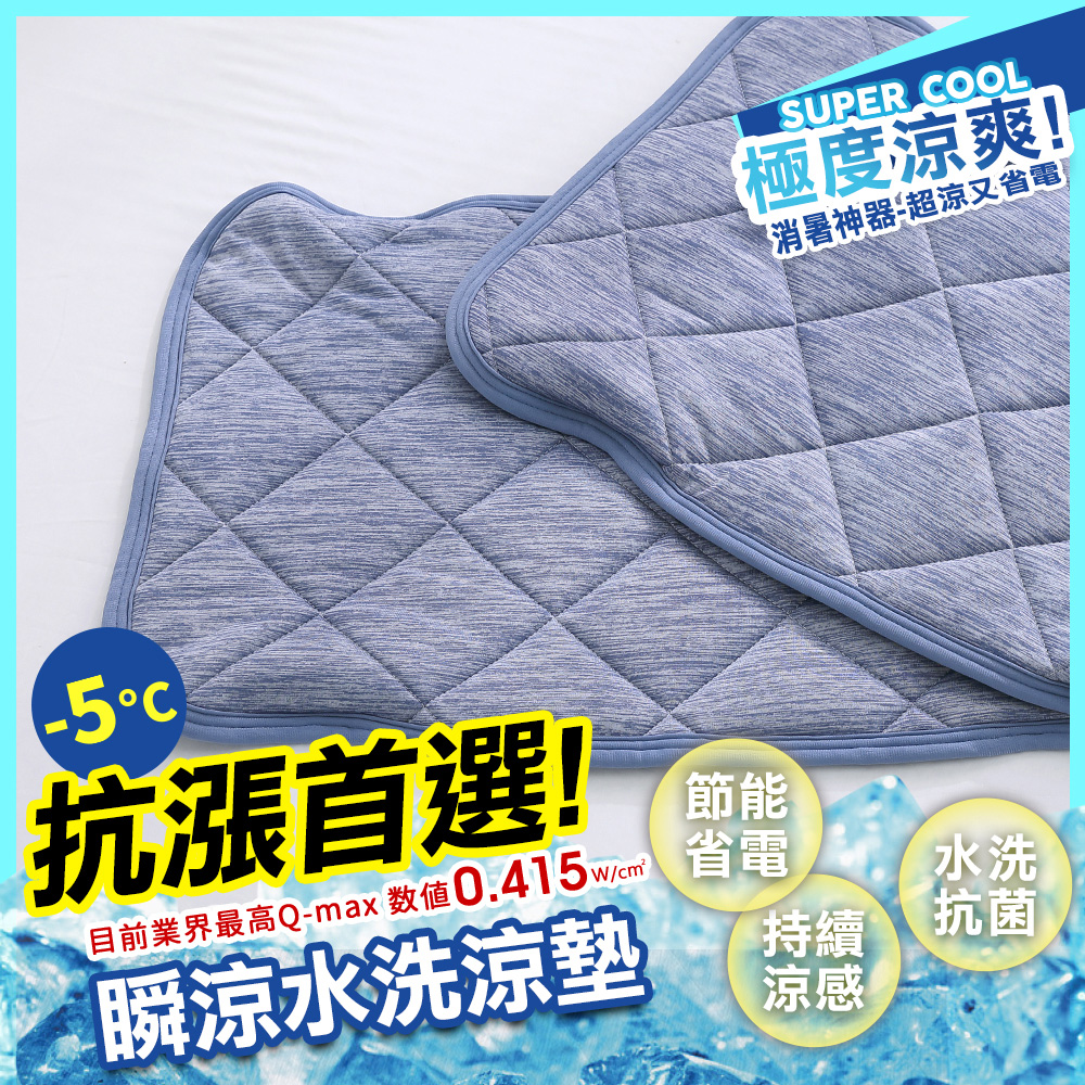 鴻宇 涼感-5度C 瞬涼可洗抗菌枕頭保潔墊2入 SUPERCOOL接觸涼感