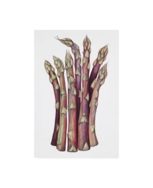 "Deborah Kopka Asparagus Muted Colors Canvas Art - 15.5"" x 21"""