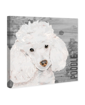 """Oliver Gal Love My Poodle Canvas Art, 12"""" x 12"""""""