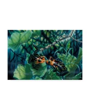 """Dann Spider Warren First Kiss Frogs Canvas Art - 36.5"""" x 48"""""""
