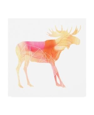 "June Erica Vess Agate Animal Vi Canvas Art - 15.5"" x 21"""
