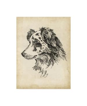 "Ethan Harper Breed Studies Xi Canvas Art - 36.5"" x 48"""