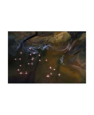 "Raymond Ren Rong Flying Over Lake Magadi 3 Canvas Art - 37"" x 49"""