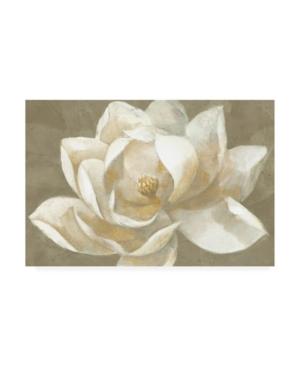 """Albena Hristova Majestic Beige Canvas Art - 19.5"""" x 26"""""""