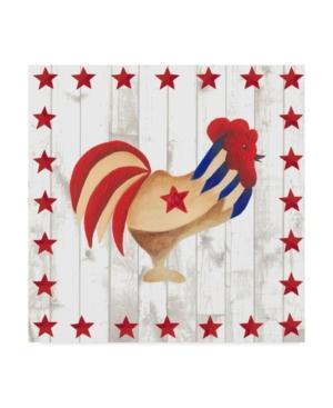 """Regina Moore Americana Animals Ii Canvas Art - 15"""" x 20"""""""