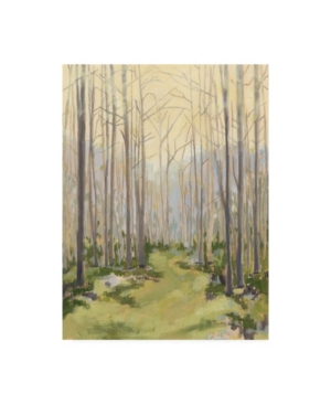 """Megan Meagher Delicate Forest I Canvas Art - 15"""" x 20"""""""