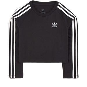 adidas Originals adidas Originals Black Cropped T-shirt 8-9 years (134 cm)