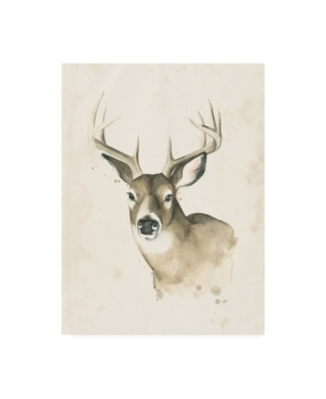 "Grace Popp Animals Canvas Art - 27"" x 33.5"""