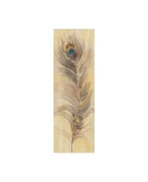 "Albena Hristova Blue Eyed Feathers Ii Canvas Art - 15.5"" x 21"""
