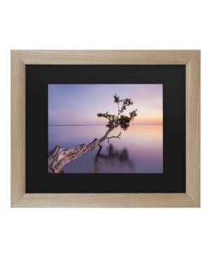 "Moises Levy Water Tree Xv Matted Framed Art - 27"" x 33"""