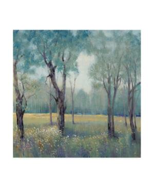 "Tim Otoole Thin Morning Mist Canvas Art - 15"" x 20"""