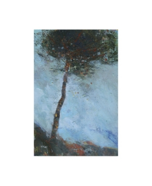"Paul Baile Lone Moorland Pine Canvas Art - 19.5"" x 26"""